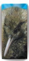 Haast tokoeka kiwi