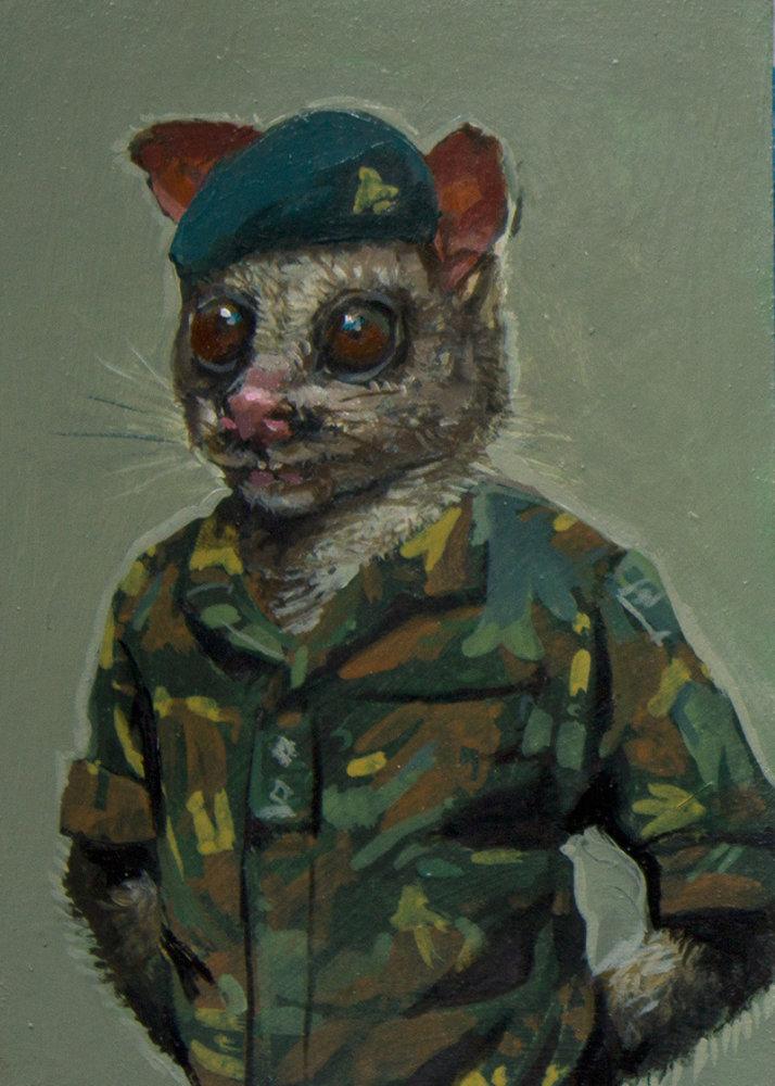 Partisan Possum