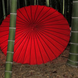 Kyoto umbrella