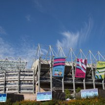 Rugby World Cup 2015-0276