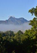 NSW: Mount Warning