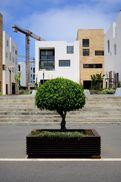 Rabat: Sale Marina