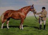 Commission for Ken Hughes