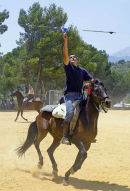 Spanish lad and Andalucian horse