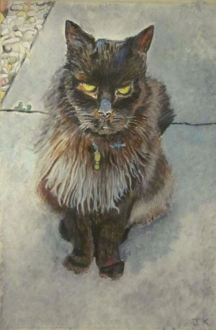 Charles The  Cat