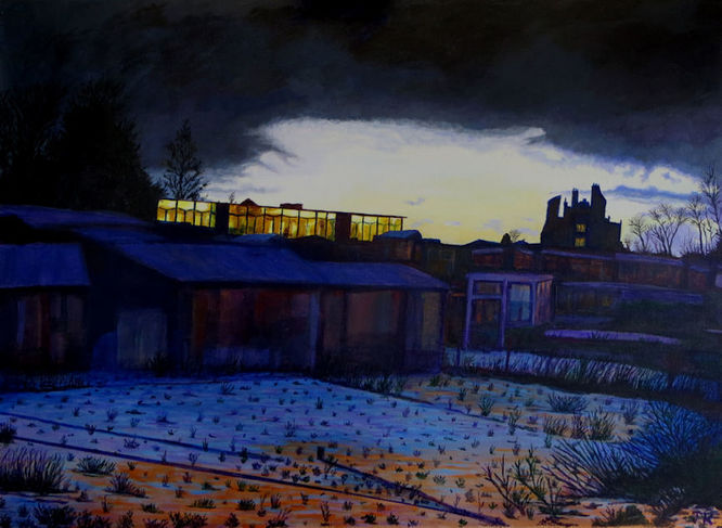 Winter dawn over allotments