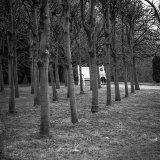 011.Girl in Park