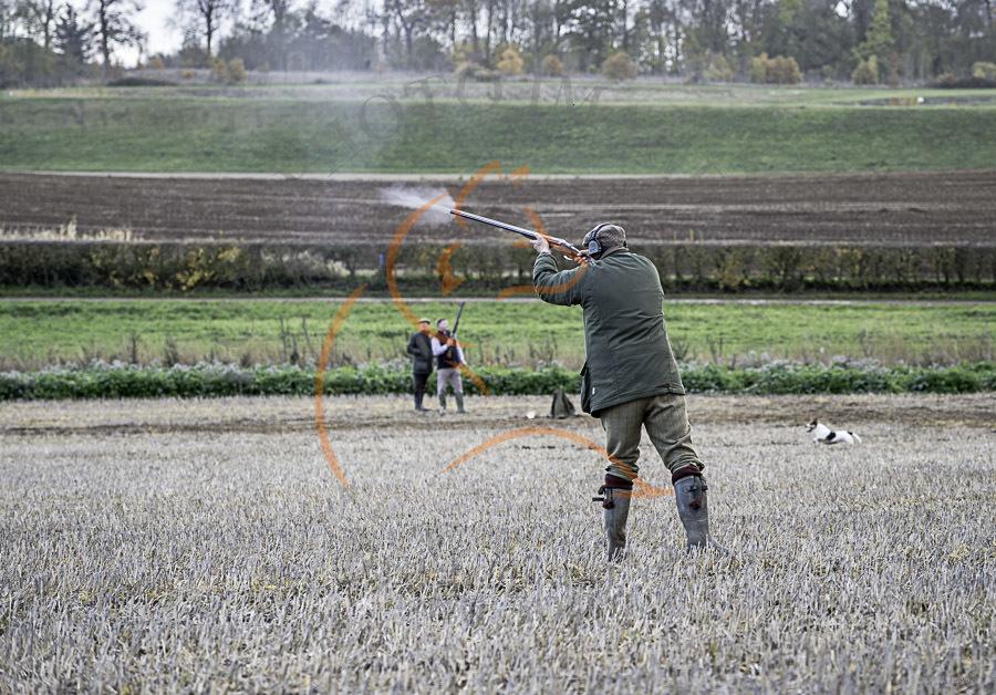 Chicksands Shoot 10-11-2018-7420
