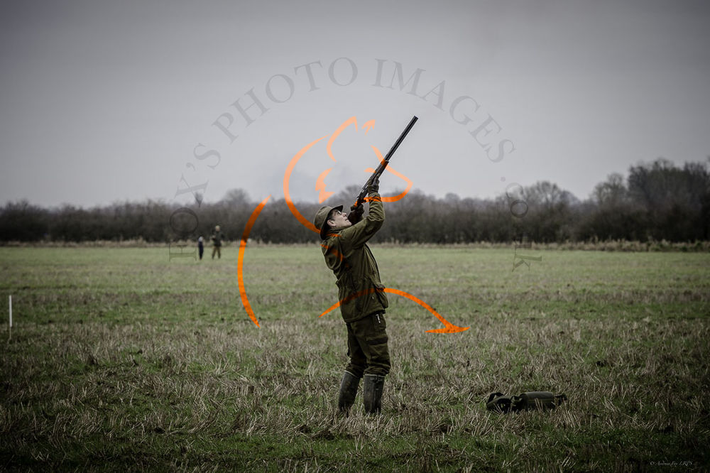 Wilstead Beaters Day 25th Jan 2020-8217