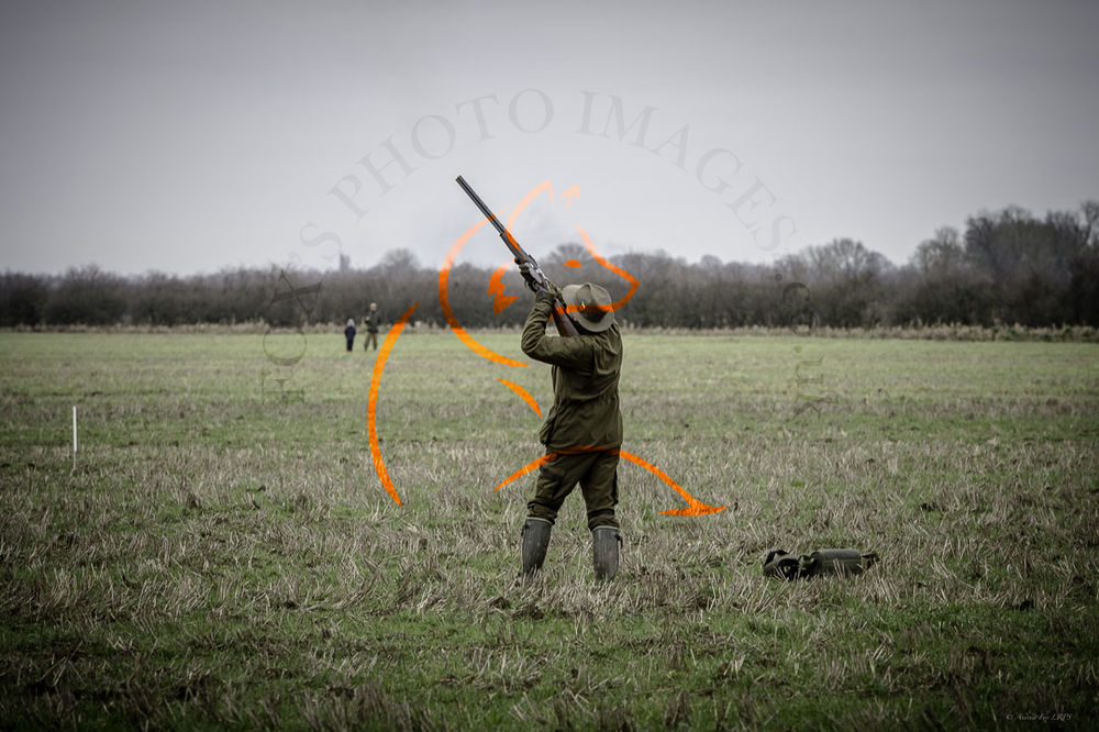 Wilstead Beaters Day 25th Jan 2020-8221