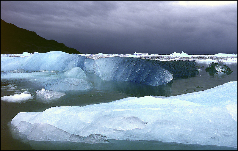 Blue icebergs in Patagonia