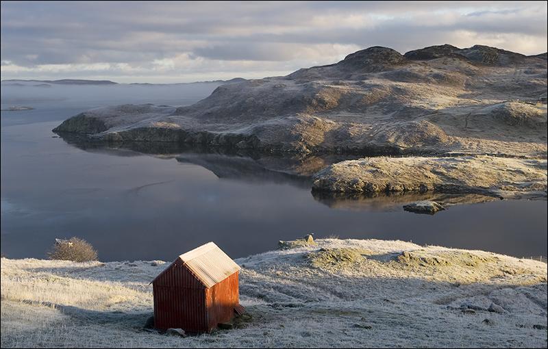 Garyvard dawn frost