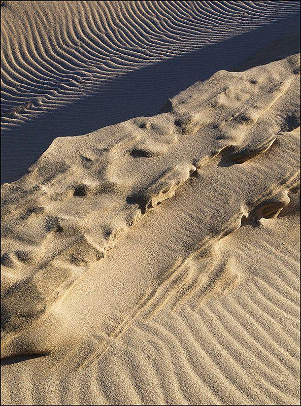 Eoropie sand sculpture