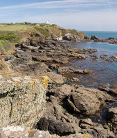 Polpeor Cove / Lizard Point
