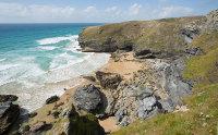 Stem Cove