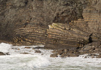 Recumbent Fold - Crackington Haven (S3)
