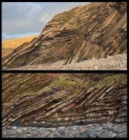 Angular Recumbent Folds - Tremoutha Haven (S3)