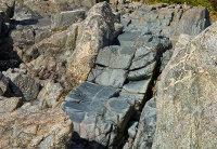 Basalt Dyke - Leggan Cove (S19)