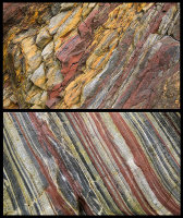 Devonian Stripes - Parbean Cove - (S19)