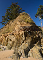 Raised Beach - Bream Cove (S20)