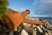 Flotsam and Jetsam / St Loys Cove