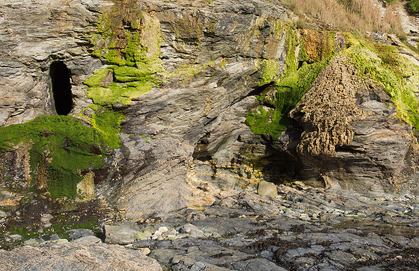 Stackhouse Cove - Tufa Deposits / Adit