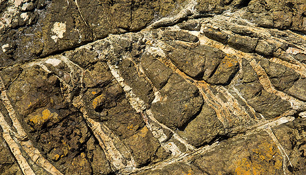 Dunite Veins - Coverack - (S18)