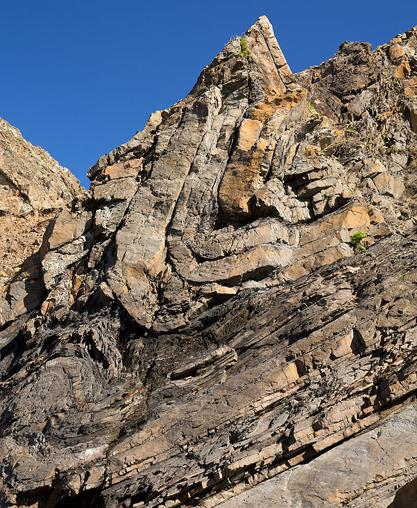 Syncline (S1)