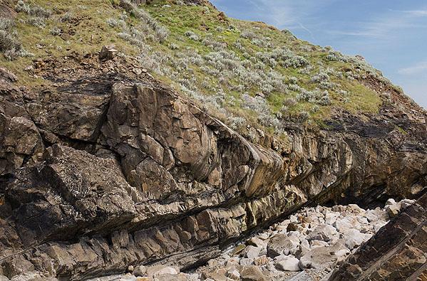 Anticline - Lower Longbeak (S7)