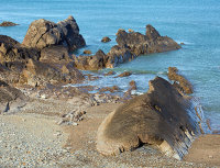 Whale Rock - Anticline