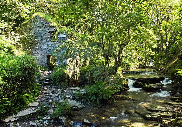 Trewethett Mill
