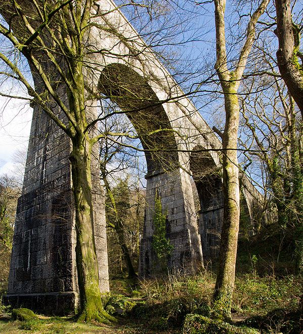 Luxulyan Valley - Treffry Viaduct