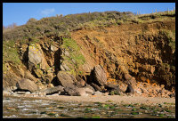 Conglomerate - Porthluney Cove (S22)