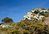 Ordovician Quartzite Crags