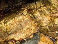 Pegmatite / Aplite - Cape Cornwall (S12)