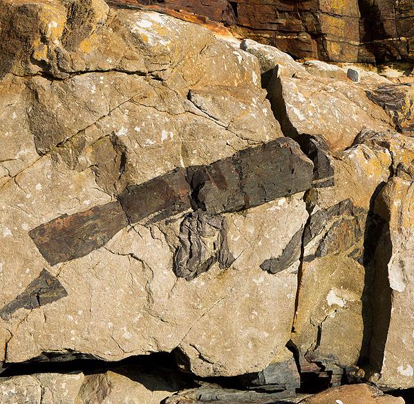 Xenolith - Tremearne Cliff (S21)