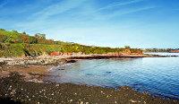 Saltern Cove