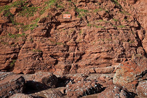 Permian Breccia - Ness Cove (S37)