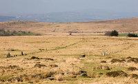Merrivale Bronze Age Ceremonial Complex
