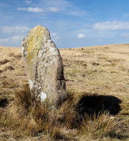 White Moor Stone  - Boundary Stone