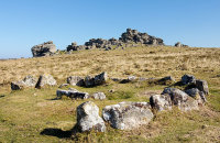 Ring Cairn / Cist - Houndtor Down
