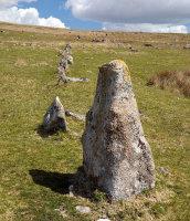Trowlesworthy Stone Row - 3