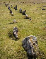 Trowlesworthy Stone Row - 2