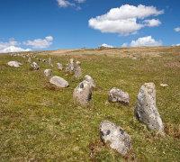 Trowlesworthy Stone Row - 1