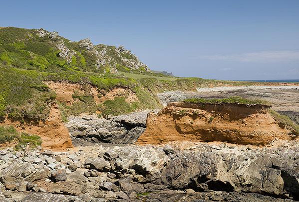 Head Deposits - Western Cove (S35)