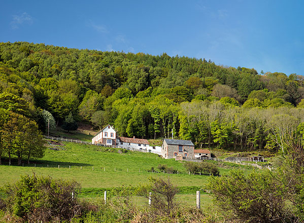 Greenaleigh Farm