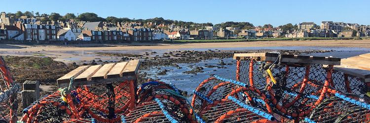 lobster pots at north berwick harbour