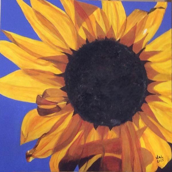 flower, colourful, sunshine, Mediterranean, sunflower