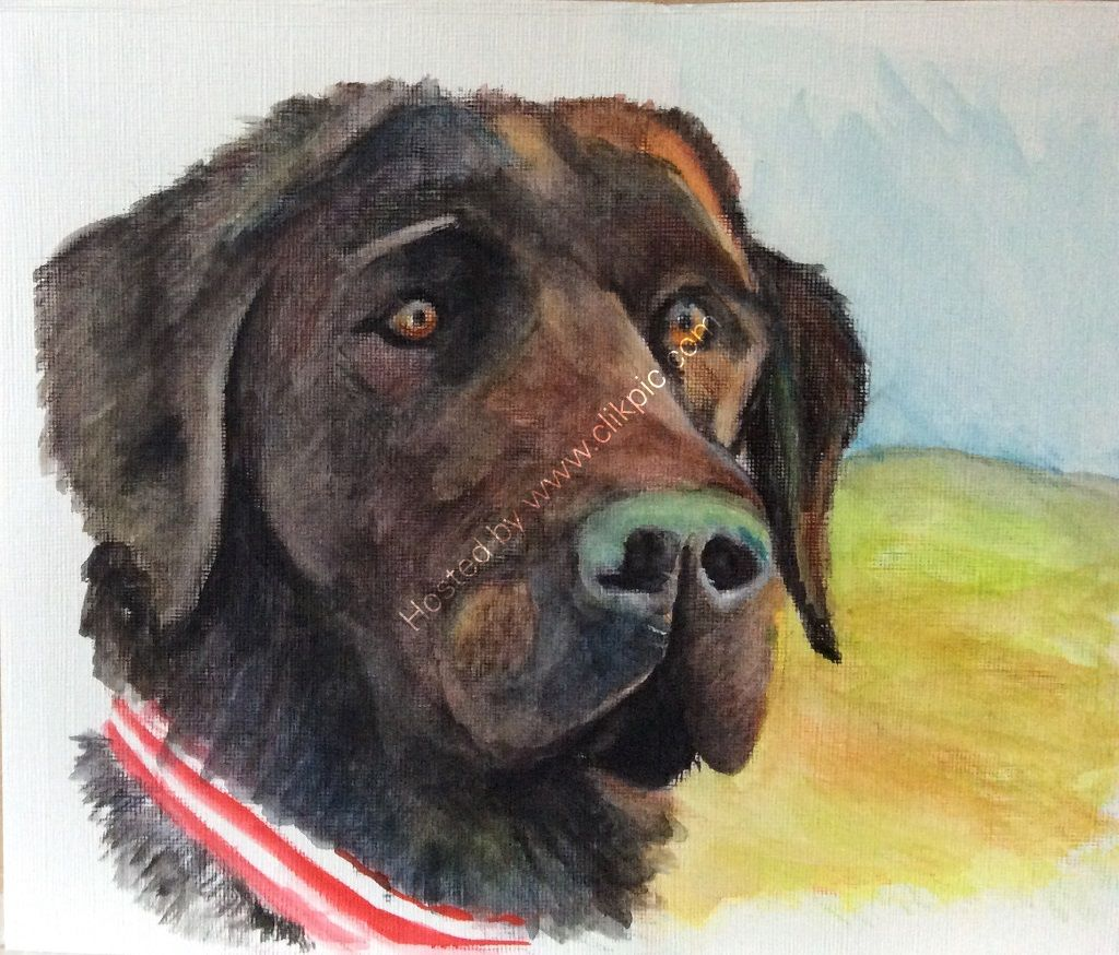 dog, labrador, mixed media, pet portrait