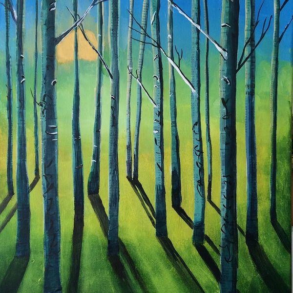 sunlight, shadows, trees, reflections, sunrise